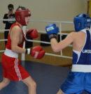 Запорожцы завоевали две бронзы на чемпионате Украины по боксу